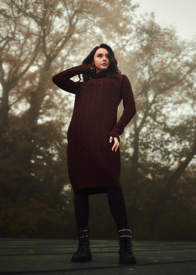 Сукня в'язана з візерунком та високим горлом.